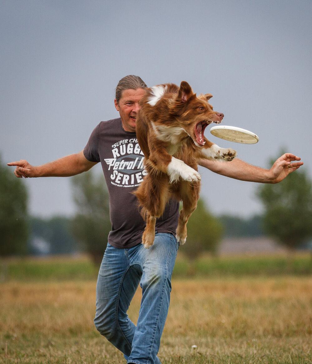 Reint Elzinga Dogfrisbee Joey
