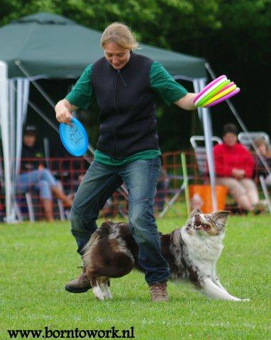 Yvette Dogfrisbee veiligheid